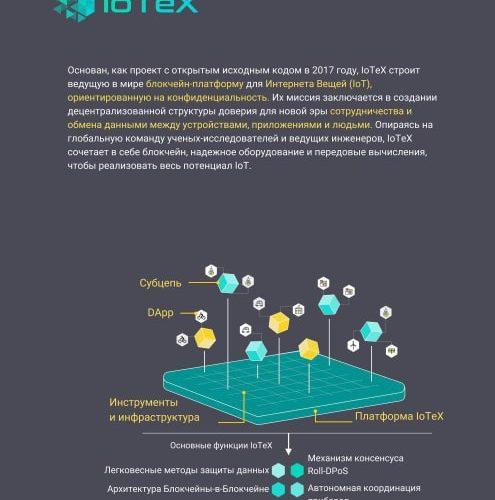 1iotex выставка