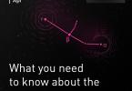 Главная сеть