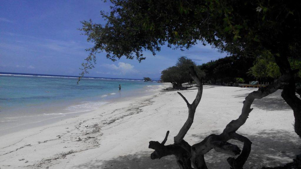 Один из островов Гили