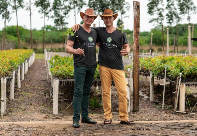 восстановление лесов в парагвае