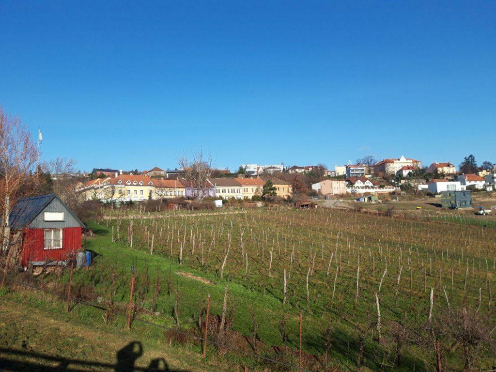 недвижимость в Чехии стабильно дорожает Чехия Прага