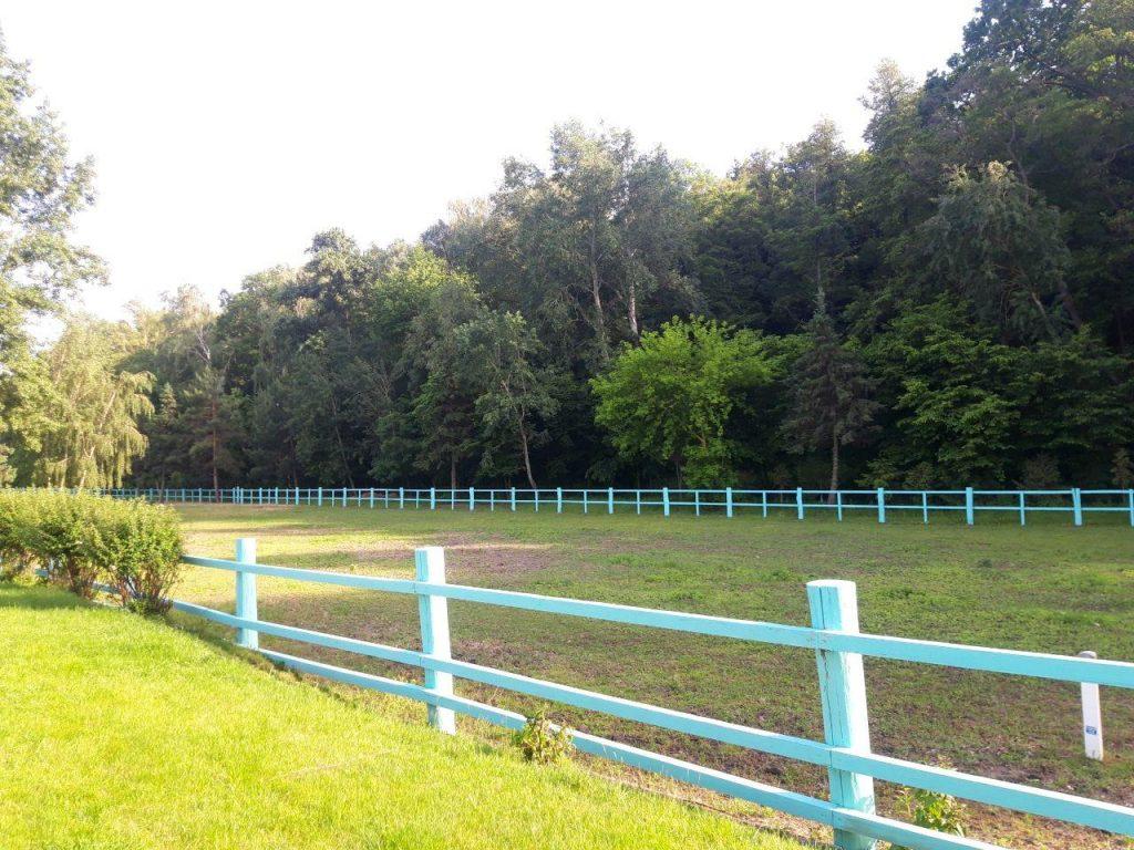 конный клуб в межигорье