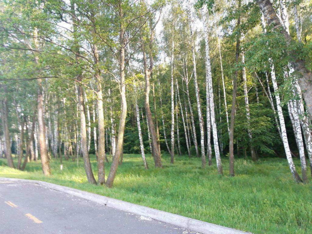 природа киевской области